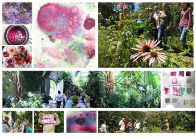 Sevengardens Konstanz – Workshops